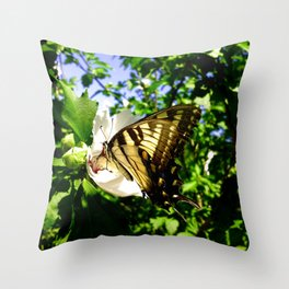 Swallowtail Butterfly Inside Hibiscus Blossom Throw Pillow