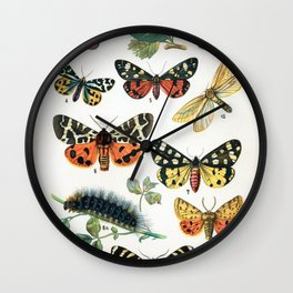 Butterfly Chart Vintage Wall Clock