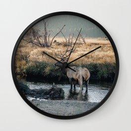Bull Elk In Rocky Mountain National Park Colorado Wall Clock
