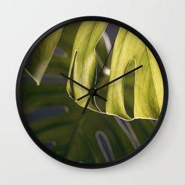 Monstera Study #2 Wall Clock