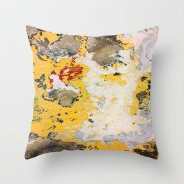 Broken Paint Throw Pillow