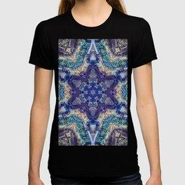 The City of Jerusalem, Israel T-shirt