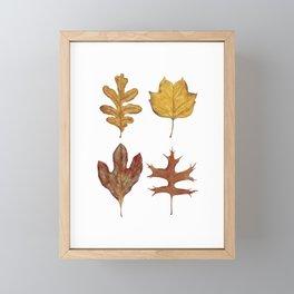 Fall Leaves Painting Framed Mini Art Print