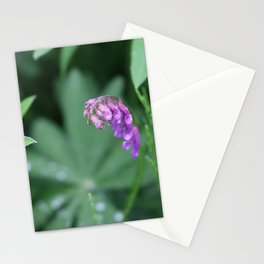 The purple flower Stationery Cards