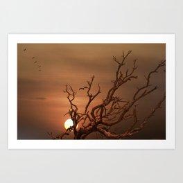 Pelicans Flying Over Dead Tree Art Print