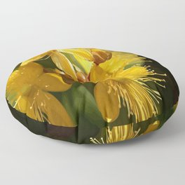 Turkish St Johns Wort Wild Flower Vector Image Floor Pillow