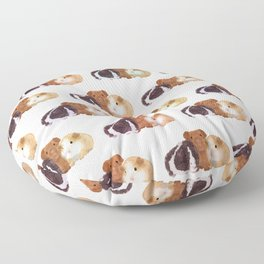 Guinea Pigs Floor Pillow