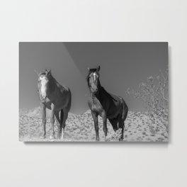 Wild_Horses B & W 3501 - Nevada Metal Print