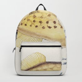 Antique fish drawn by Fe Clarke (1849-1899) Backpack
