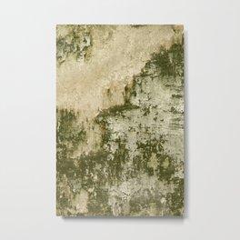 Natural Mossy Urban Wall Metal Print