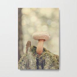 Woodland Mushroom Metal Print