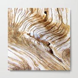 Organic design Tree Wood Grain Driftwood natures pattern Metal Print