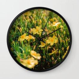 Tiny Yellow Flowers Wall Clock