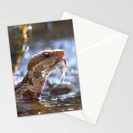 Watercolor Snake, Water Moccasin 05, Merchants Millpond, North Carolina Stationery Cards