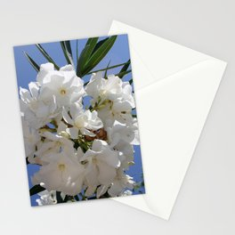 Nerium Oleander White Stationery Cards