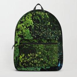 Wnding Creek Backpack