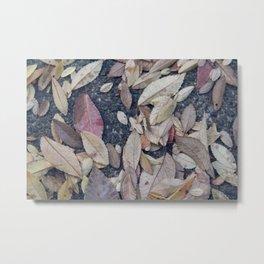 Soft Leaves Metal Print