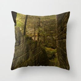 Everything is Magic Throw Pillow