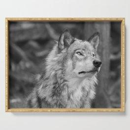 Beautiful wolf Serving Tray