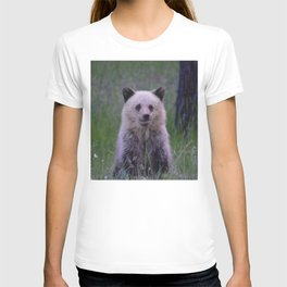 The most adorable grizzly bear cub in Jasper National Park | Canada T-shirt