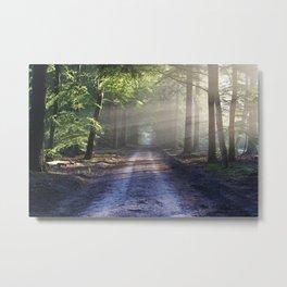 Road landscape Metal Print