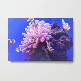 Nemo and friends Metal Print