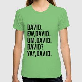 David Rose Funny Bella Canvas Shirt, Schitt's Creek Alexis QuoteS T-shirt