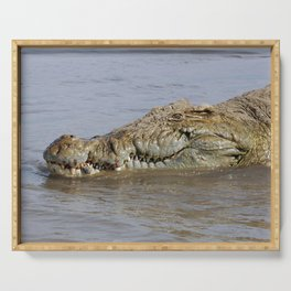 African Nile Crocodile Face Closeup Wildlife, Omo River, Africa Serving Tray