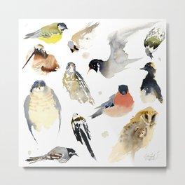 Birdie birdie Metal Print