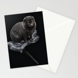 Noisy Stationery Cards