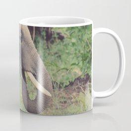 elephant eating grass Coffee Mug