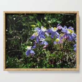 Columbine Flowers Serving Tray