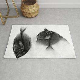 Fish X-Ray Rug