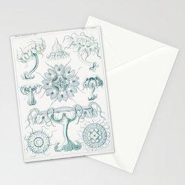 Discomedusae-Scheibenquallen from Kunstformen der Natur (1904) by Ernst Haeckel Stationery Cards