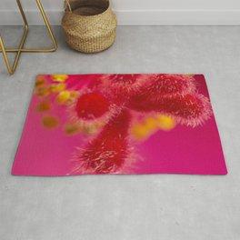 Macro Image Of A Big Pink Hibiscus Flower The Xandri Collection Rug