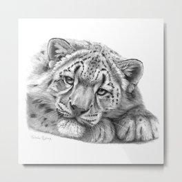 Snow Leopard Cub G105 Metal Print