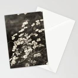 Daisies - sepia Stationery Cards
