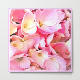 Pink Hydrangea | Nadia Bonello  Metal Print