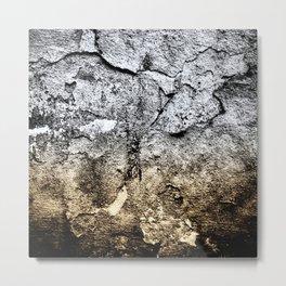 Carpe Noctem. Metal Print