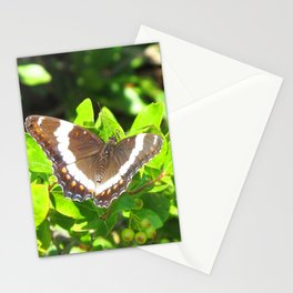 Watercolor Butterfly, White Admiral Butterfly 01, Middletown, Maryland Stationery Cards
