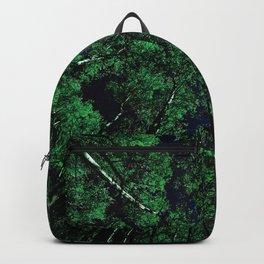Upward Glance Dark Sky Backpack