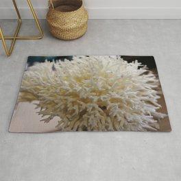 Lifeless Coral Rug