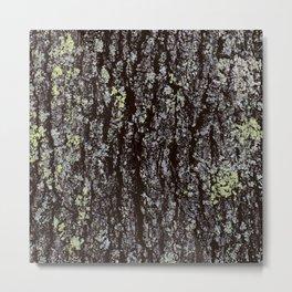 Oak Tree Bark Metal Print