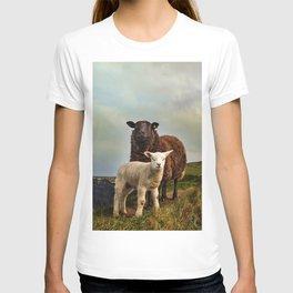 Ireland 40 T-shirt
