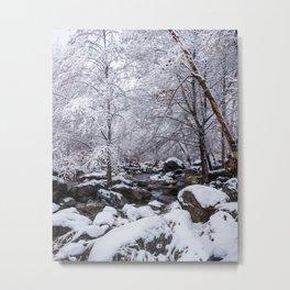 Oak Creek on a Snowy Day Metal Print