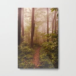 Smoky Mountain Forest Adventure II - National Park Nature Photography Metal Print