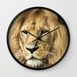 Savannah Lion King Wall Clock