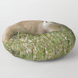 Grabbin' A Bite Floor Pillow