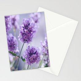 lavender Purple Stationery Cards