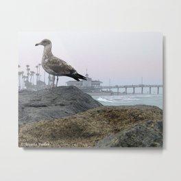 Foggy Newport Morn Metal Print